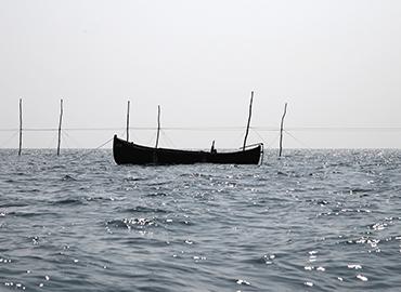 Pescuit piscicol Origini